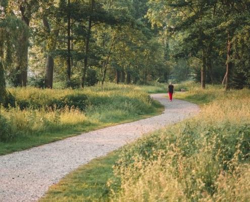 Walking For Lower Back Pain